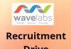 Wavelabs hiring freshers